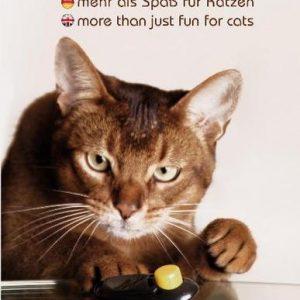 DVD kaufen - Clickertraining - mehr als Spaß für Katzen